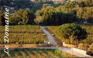 Domaine viticole de Bandol - Situation des vignes - Caractéristique du terroir de bandol < Domaine de Terrebrune