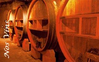 Vins Bandol - Caractéristiques, accords et dégustation de vin rouge, vins rosé, vin blanc < Domaine de Terrebrune