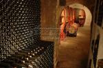 La cave du domaine | vue des vins de bandol dans la cave du domaine